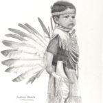 Feather Dancer 2171x3000