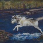 Wolf over water 2. 2-2-16.jpg